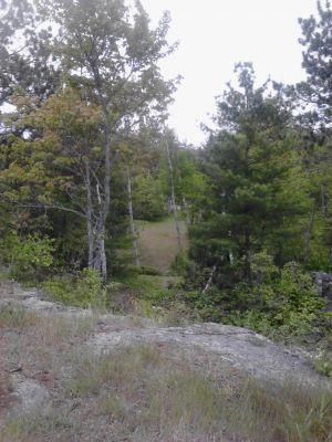 Powder Mill DGC, Main course, Hole 8 Long tee pad