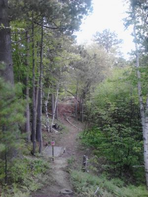 Powder Mill DGC, Main course, Hole 3 Long tee pad