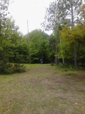 Powder Mill DGC, Main course, Hole 9 Short tee pad