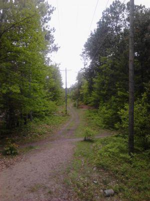 Powder Mill DGC, Main course, Hole 4 Long tee pad
