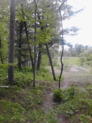 Powder Mill DGC, Main course, Hole 12 Short tee pad