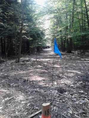 Pioneer Trail Park, Main course, Hole 18 Long tee pad