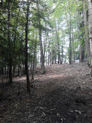 Pioneer Trail Park, Main course, Hole 7 Midrange approach