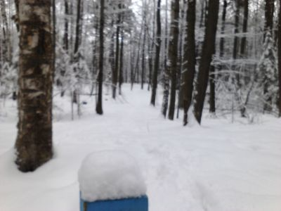 Pioneer Trail Park, Main course, Hole 15 Long tee pad