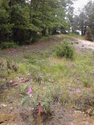 Pioneer Trail Park, Main course, Hole 9 Long tee pad