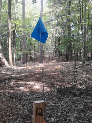 Pioneer Trail Park, Main course, Hole 12 Long tee pad