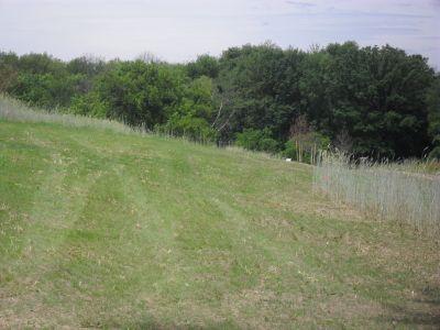 Paw Paw Park, Main course, Hole 14 Tee pad