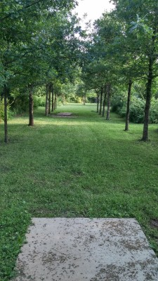 Hazel Landing Park, Main course, Hole 18 Long tee pad