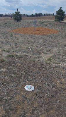 Village Greens Park, Main course, Hole 5 Putt