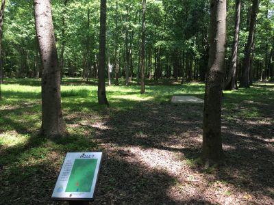 Frog Rock, Main course, Hole 7 Long tee pad
