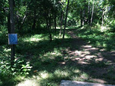 Washington County Regional Park, Ditto Farms DGC, Hole 11 Tee pad
