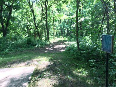 Washington County Regional Park, Ditto Farms DGC, Hole 15 Tee pad