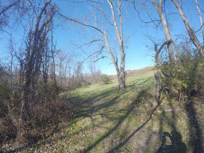 North Strabane Township DGC, Main course, Hole 5 Long tee pad