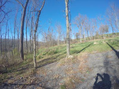 North Strabane Township DGC, Main course, Hole 4 Long tee pad
