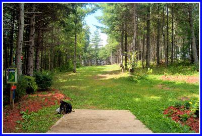 Hillcrest Farm, Main course, Hole 1 Long tee pad