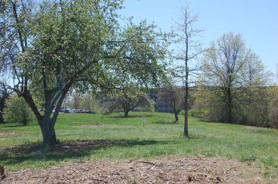 University of Massachusetts - Amherst, Orchard Hill Disc Golf, Hole 8 Midrange approach