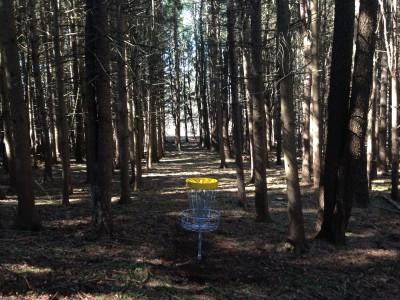 Stony Kill DGC, Main course, Hole 1 Reverse (back up the fairway)