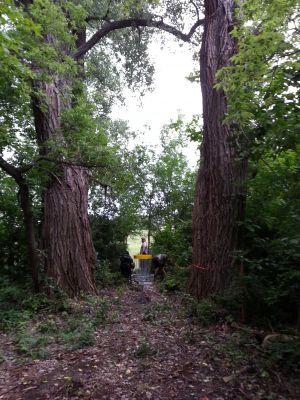 Fairmont Park, Main course, Hole 2 Putt