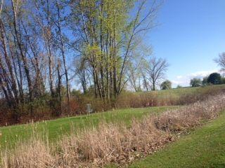Lakefront Park, Main course, Hole 6 Midrange approach