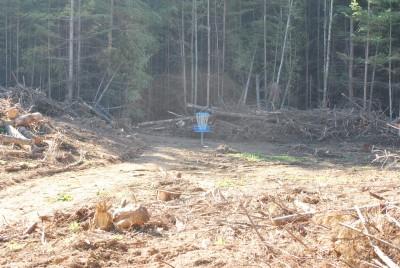 Buxton Woods, Main course, Hole 14 Midrange approach