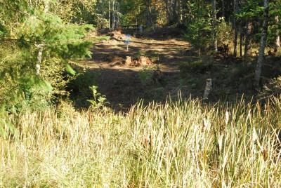 Buxton Woods, Main course, Hole 10 Tee pad