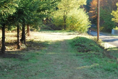 Buxton Woods, Main course, Hole 2 Tee pad
