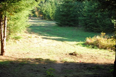 Buxton Woods, Main course, Hole 4 Tee pad