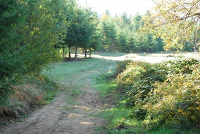 Buxton Woods, Main course, Hole 9 Tee pad