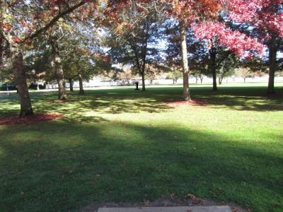Pioneer Park, Main course, Hole 1