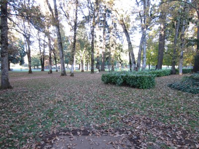 Church Park, Main course, Hole 3
