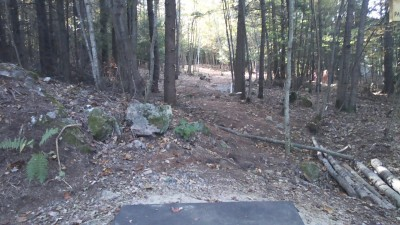 Devil's Grove, The Demon, Hole 5 Tee pad