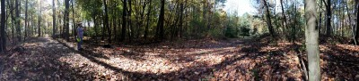 Arthur Latham Park, Main course, Hole 2