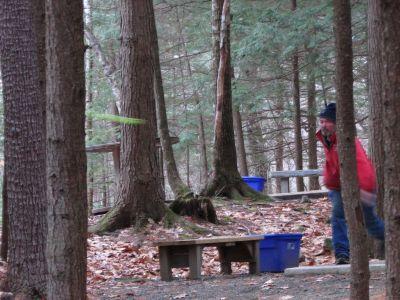 Burnsboro, Main course, Hole 8 Long tee pad