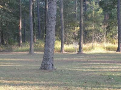 Nashville City Park, Main course, Hole 1 Midrange approach