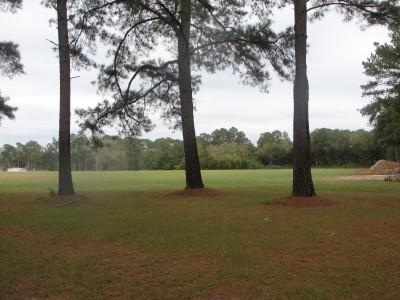 Nashville City Park, Main course, Hole 5 Long tee pad