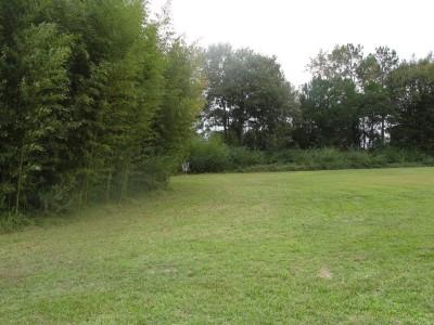 Nashville City Park, Main course, Hole 11 Midrange approach