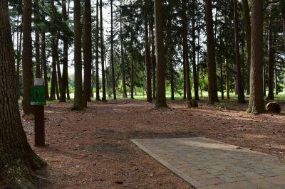 Ocean County Park, Main course, Hole 8