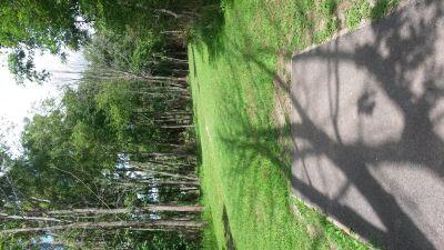 Melvin Miller Park, Main course, Hole 6 Tee pad