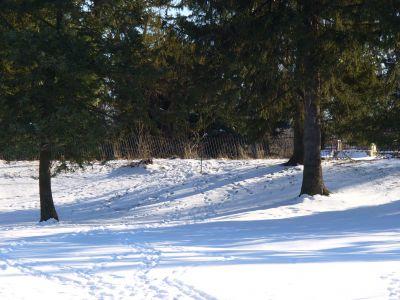 Druid Hill Park, Main course, Hole 1 Long approach