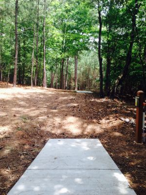 Little Mulberry DGC, Main Course, Hole 6 Long tee pad