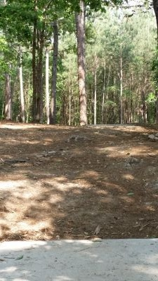 Little Mulberry DGC, Main Course, Hole 7 Long tee pad