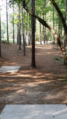 Little Mulberry DGC, Main Course, Hole 17 Long tee pad