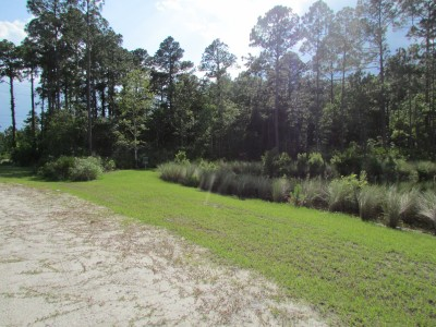 St. Johns River State College, Main course, Hole 7 Midrange approach