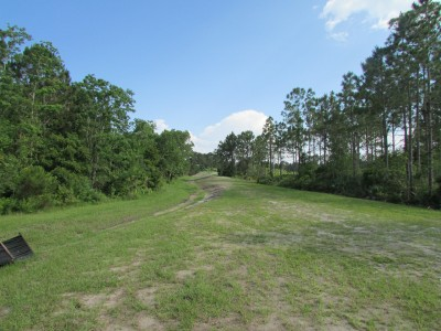 St. Johns River State College, Main course, Hole 5 Long tee pad