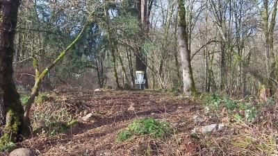 McCormick Park, Main course, Hole 1 Short approach