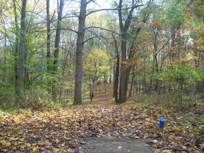 Patapsco Valley State Park, Main course, Hole 8 Long tee pad