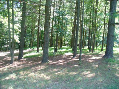 Patapsco Valley State Park, Main course, Hole 13 Midrange approach