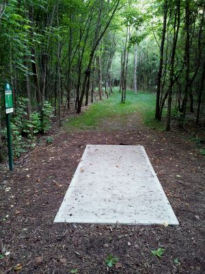 Sunrise Rotary DGC, Mainc ourse, Hole 6 Tee pad
