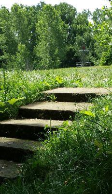 Simsbury Park, Main course, Hole 4 Short approach