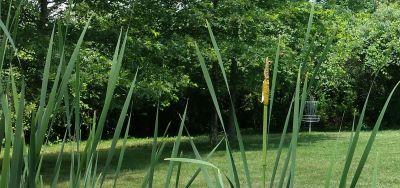 Simsbury Park, Main course, Hole 3 Short approach